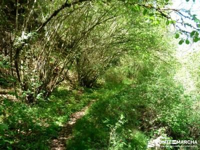 Senda de los Pescadores-Cuellar;montañas cuevas del aguila cebreros